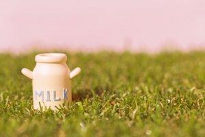 牛乳飲み放題プラン