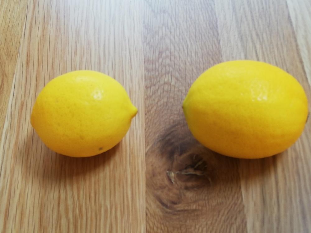 オイシックスのメイヤーレモン