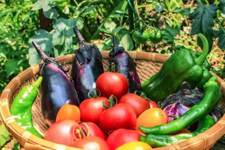 食材宅配を商品価格で比較